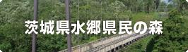 茨城県水郷県民の森