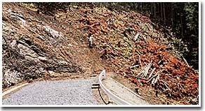 林道事業の測量状況(西茨城郡七会村)