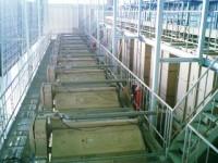 2階から見た種子乾燥機(左)と放冷タンク(右)