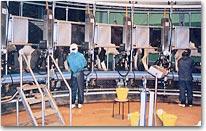 畜産基盤再編総合整備事業 (茨城南部地区)